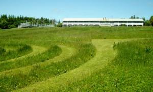 Labyrinth below the Inn